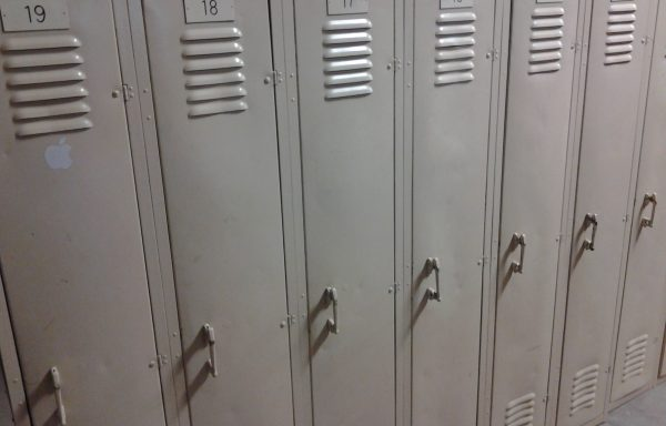 Vintage School Lockers